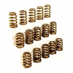 Hamilton Cams Performance Valve Springs